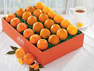 2699-honeybell-navel-tangerine-gift