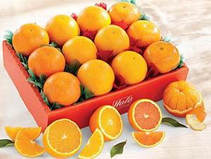 simply-spectacular-honey-tangerines