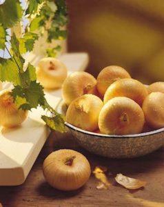 georgia-vidalia-onions