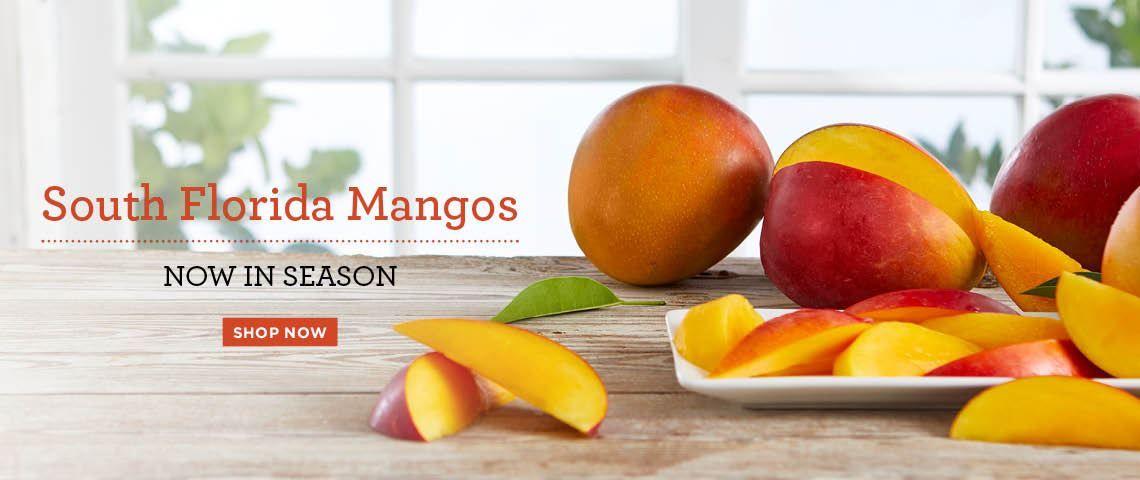 Slide - Mango