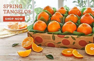 Spring Tangelos