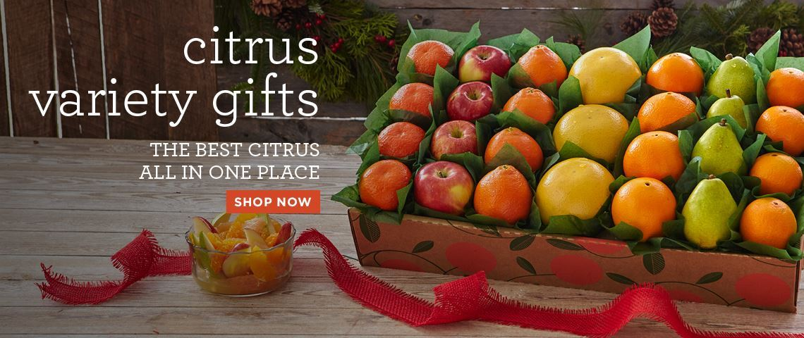 Florida Honeybells Oranges Ruby Red Gfruit Citrus Fruit