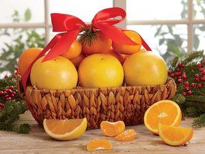 Cream of the Crop Basket - Hale Groves - Fruit Baskets