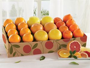 Sweet Six Citrus Gift Collection