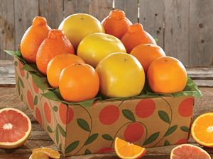 The Pelican - with Honeybells - Hale Groves - Fruit Baskets