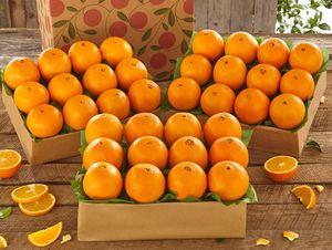3 Trays of Cara Cara Navel Oranges