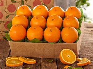 1 Tray of Navel Oranges, Approx. 9 lbs.