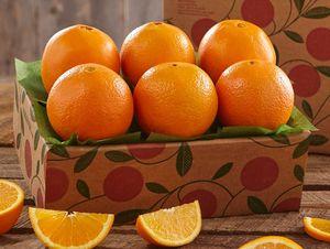 Sampler Tray of Navel Oranges