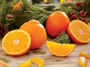 Sugar Belles: Sugar Belle Oranges For Sale Online