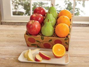 Season Sampler - Hale Groves - Fruit Baskets