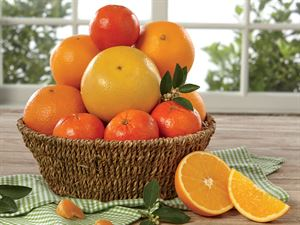 Hales Citrus Lovers Fruit Basket