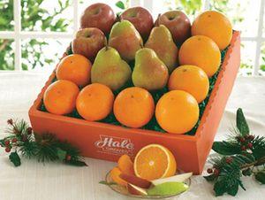 Four Times Four - Hale Groves - Fruit Baskets