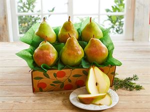 The Pearfect, 10 Pears, Approx. 5.5 lbs.