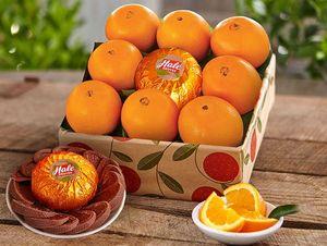 Oranges & Chocolate