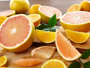 Taste Tempter with Valencia Oranges - Hale Groves - Send Florida Fruit