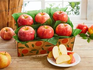 Orchard Fresh Apples