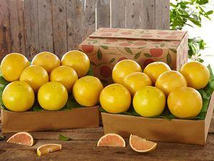 Ruby Red Grapefruit - Send Gift Fruit