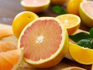 Grove Navel Oranges and Ruby Red Grapefruit