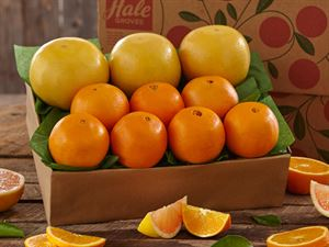 1 Tray Navel Oranges & Ruby Red Grapefruit, Approx. 9 lbs.