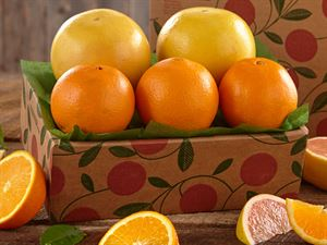 1/2 Tray Navel Oranges & Ruby Red Grapefruit, Approx. 5 lbs.