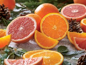 Navel Oranges and Ruby Red Grapefruit