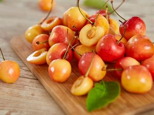 Rainier Cherries: Blonde Rainier Cherries For Sale Online