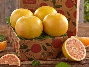 Sampler Tray of Ruby Red Grapefruit