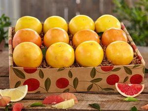 Grapefruit Trio