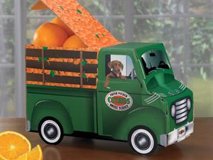 Sunshine Truck, Tangerines, Approx. 5 lbs.