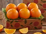 1n-navel-oranges-for-sale-online-091918_05.jpg