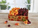 The Best of Both Cherries