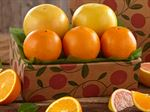 buy-navel-oranges-ruby-red-grapefruit-091919_05.jpg
