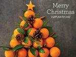 citrus-gift-card_04.jpg