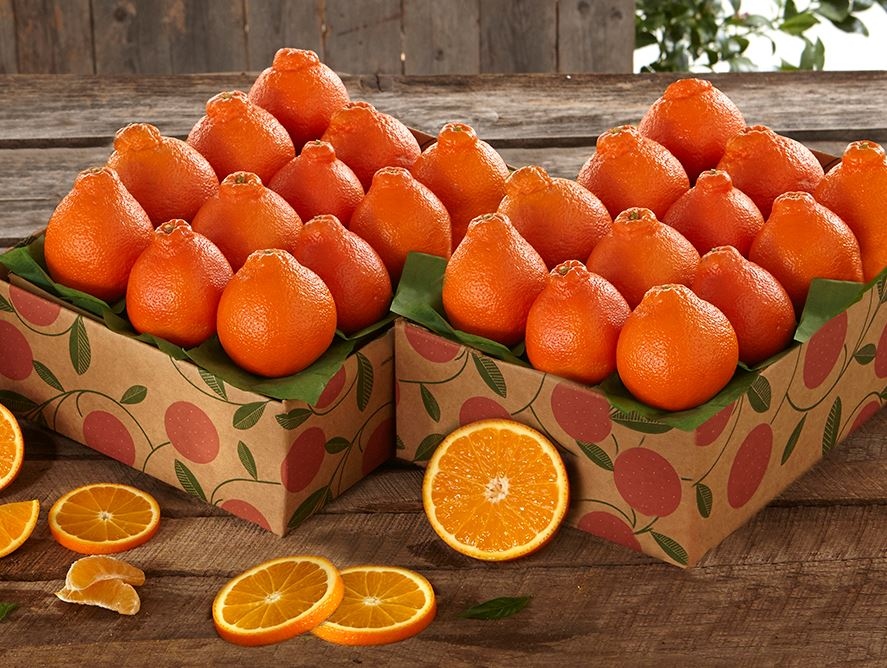 Save on 2 Shipments of Honeybells