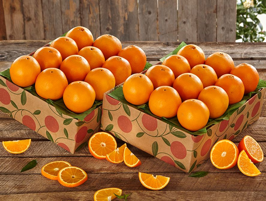 Image result for Grove Navel Oranges