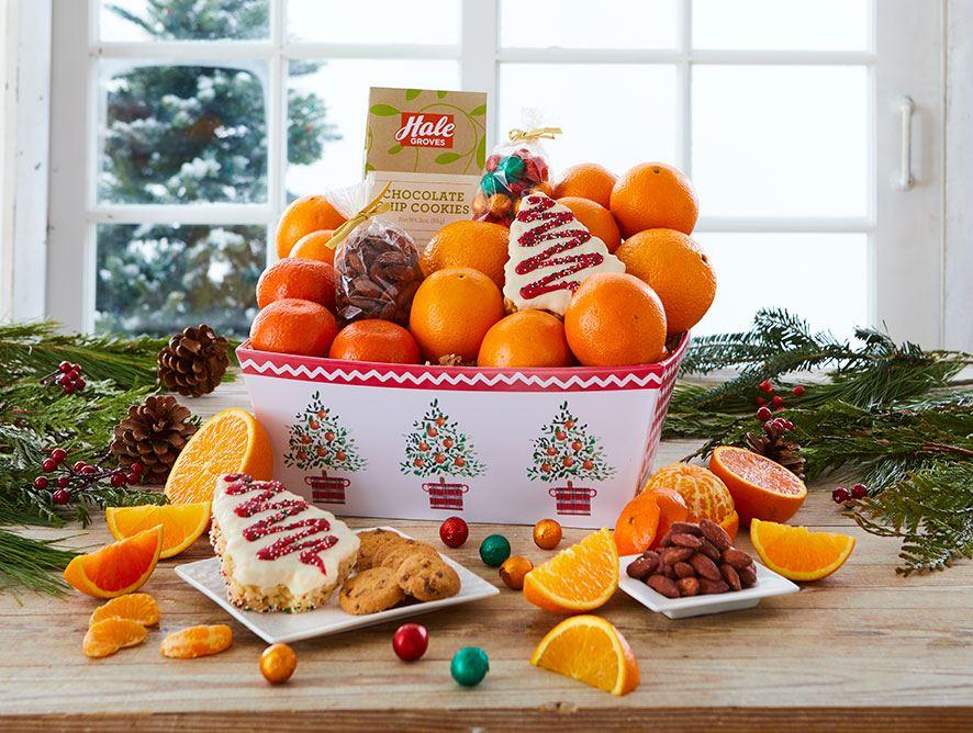 233-festive-fruit-basket-091218_01.jpg