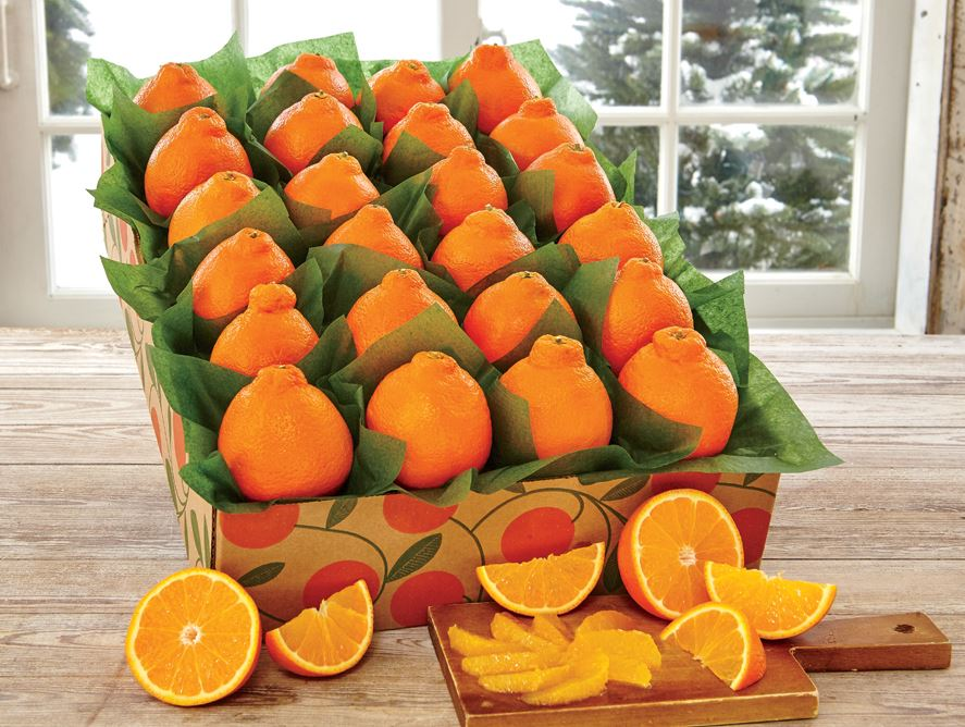 Mini Honeybell Supreme - Hale Groves - Fruit Baskets