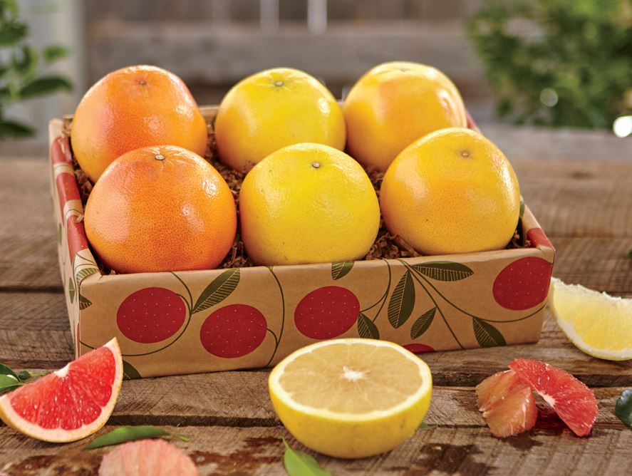 Grapefruit 6-Packs