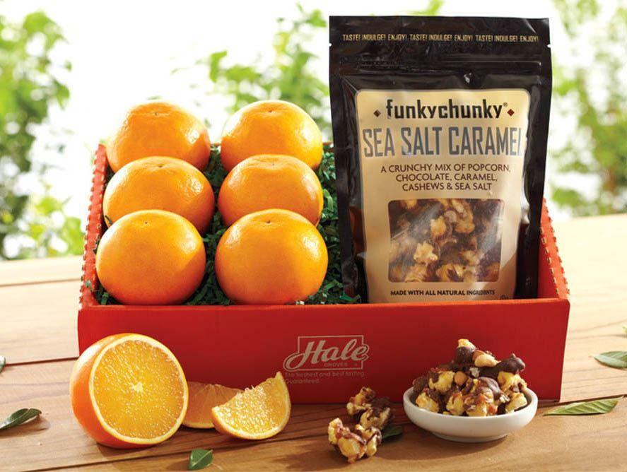 Hale Orange Snackbox