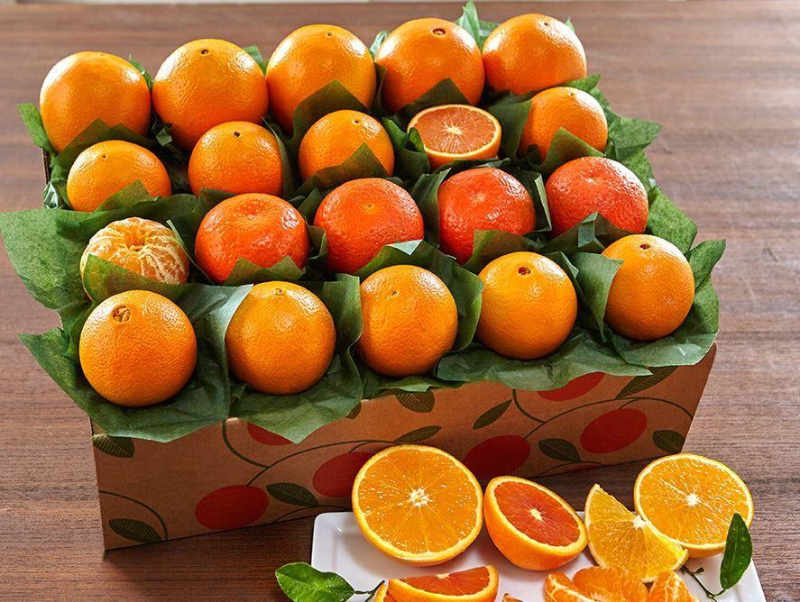 Amazing Oranges!