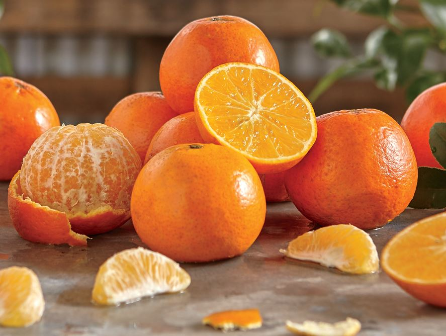 1/2 Tray Temple Oranges, Approx 4 lbs.