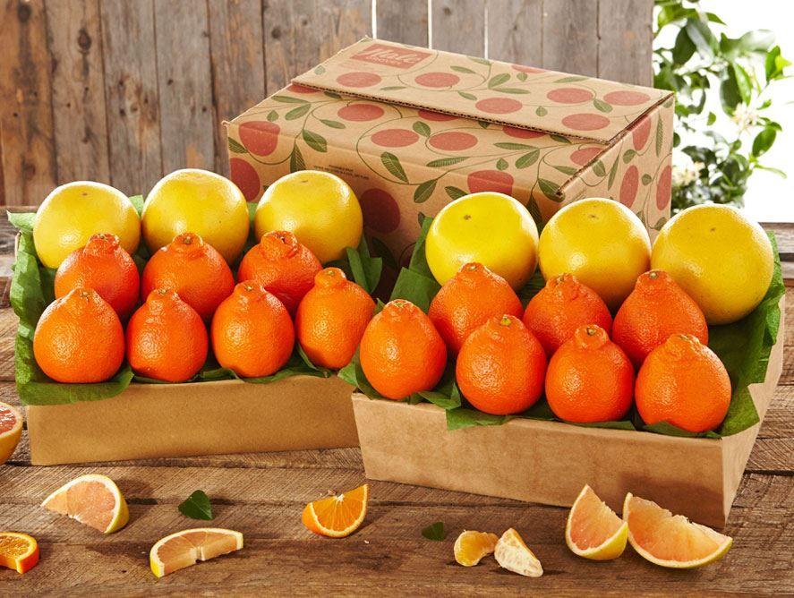bogo-spring-tangelos-grapefruit-022619_01.jpg