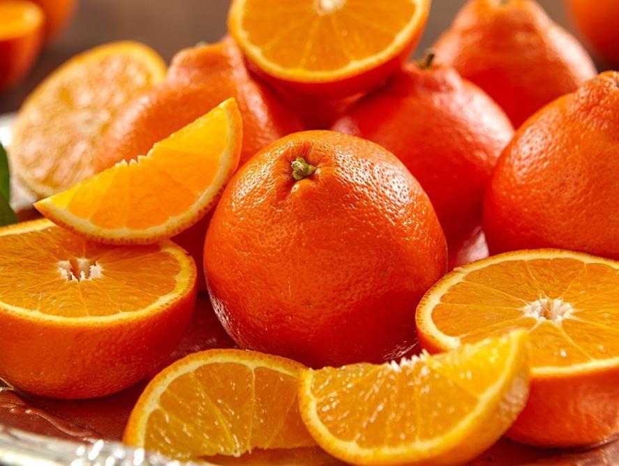 Honeybell Oranges Buy Honeybell Oranges From Hale Groves