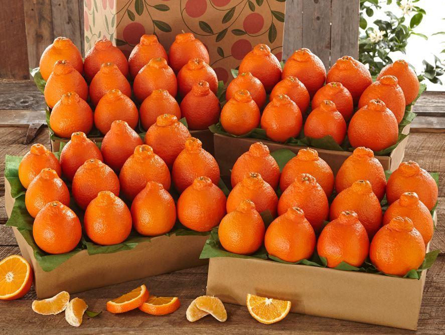 buy-goldenbelles-online-031720_01.jpg