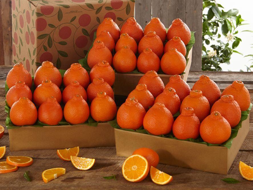 buy-goldenbelles-online-031720_02.jpg