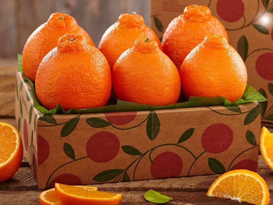 buy-goldenbelles-online-031720_05.jpg