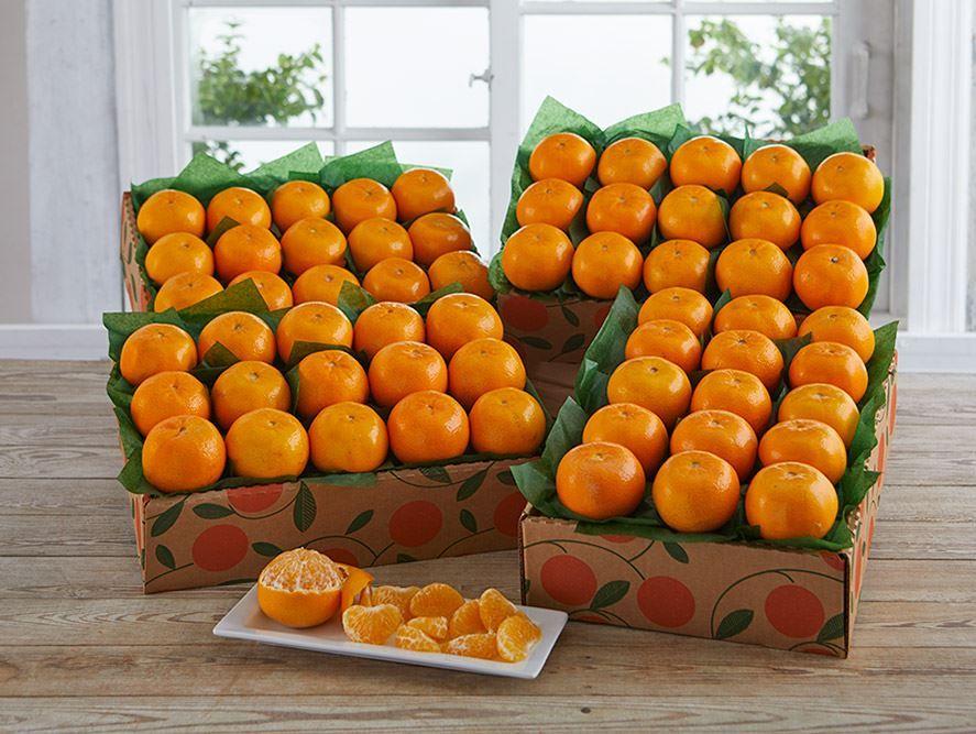 buy-holiday-gold-oranges-online-120919_05.jpg