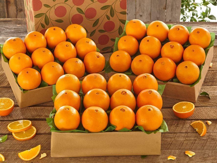 buy-navel-oranges-online-102820_02.jpg