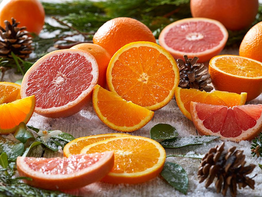 Navel Oranges and Ruby Red Grapefruit - Hale Groves, shipping fresh Florida citr