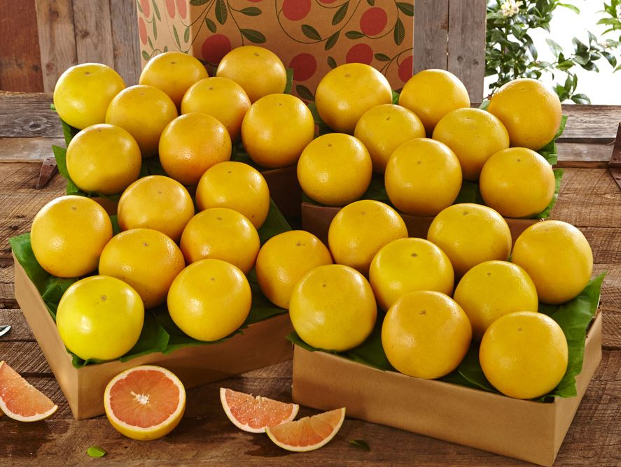 florida-ruby-red-grapefruit-for-sale-online-102820_01.jpg